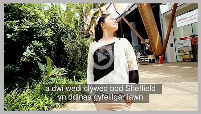 Welsh subtitling service