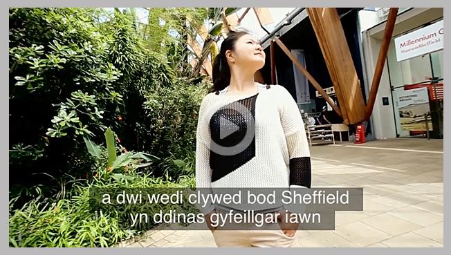 Welsh subtitling services
