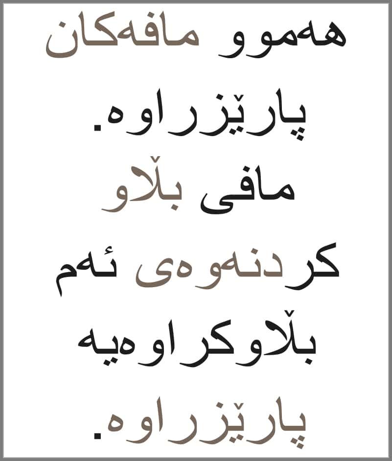Kurdish subtitling service