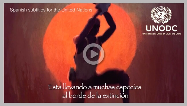The United Nations Office on Drugs and Crime Subtitling