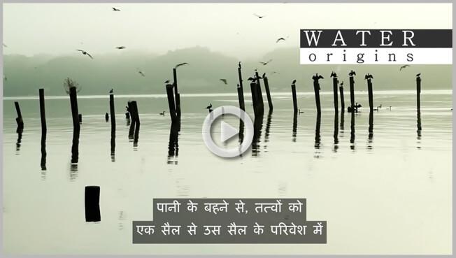 Hindi subtitling